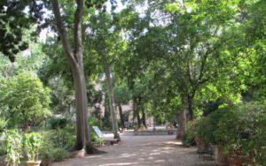 Giardino_dei_semplici_vialetto-620x388