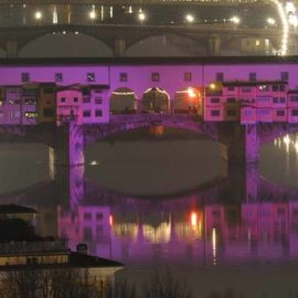 Purple Bridge…
