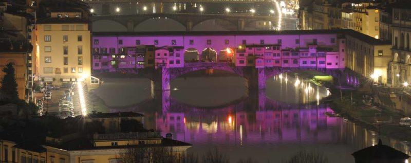 [cml_media_alt id='518']purple-bridge[/cml_media_alt]
