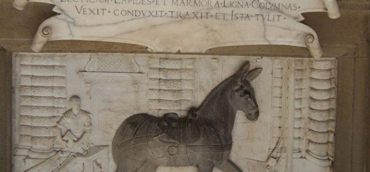 Palazzo Pitti, omaggio all'asina