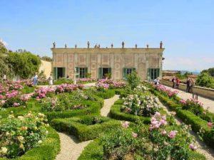 [cml_media_alt id='628']giardino-del-cavaliere[/cml_media_alt]