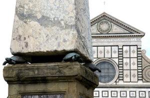 tartarughe Giambologna