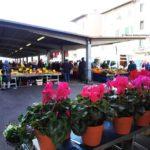 Il mercato di S.Ambrogio.