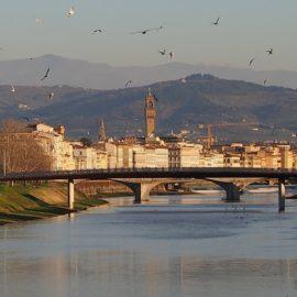 Un battito d'ali sopra Firenze.