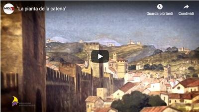 Video animazione della pianta della Catena.