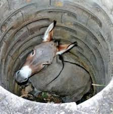 L'asino caduto nel pozzo